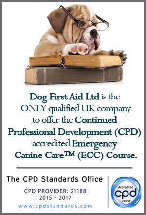 safety - dog first aid